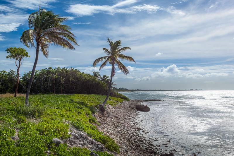 Cayman Coastal Loop  U2013 Eco Rides